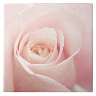 Light Pink Rose Flower - Roses Flowers Floral Tile