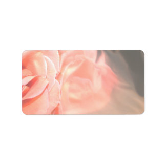 Light pink rose reflection in silver address label