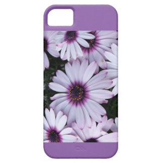 Light Purple Flowers with Purple Background iPhone 5 Cases