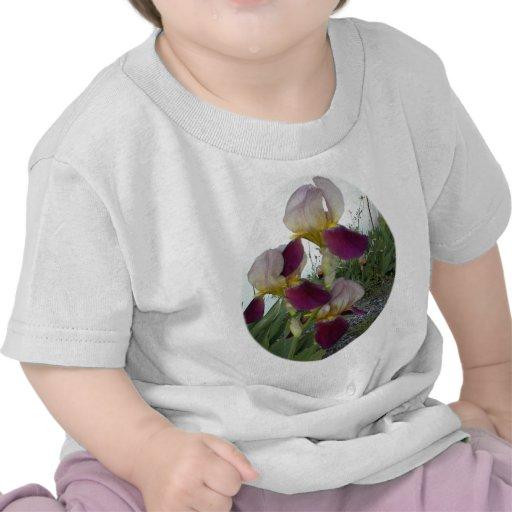 Light purple with pink irises t-shirt