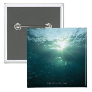 Light shining on coral reef and school of fish 15 cm square badge