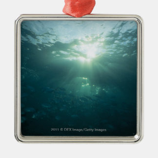 Light shining on coral reef and school of fish Silver-Colored square decoration