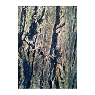 Light Tree Trunk Acrylic Wall Art