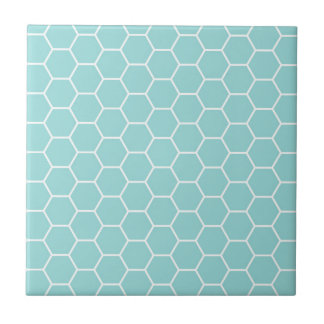 Light Turquoise Hexagon Honeycomb Pattern Tile
