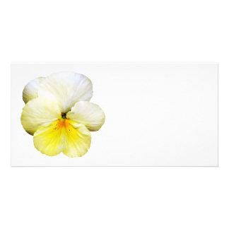 Light Yellow Pansy Personalized Photo Card