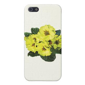 Light Yellow Primroses iPhone 5 Cover