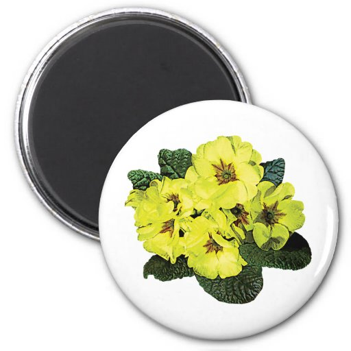 Light Yellow Primroses Refrigerator Magnet