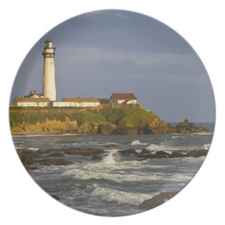 Lighthouse at Pigeon Point State Beach in San 2 Plate