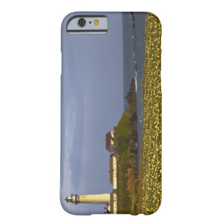 Lighthouse at Pigeon Point State Beach in San Barely There iPhone 6 Case