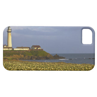 Lighthouse at Pigeon Point State Beach in San iPhone 5 Cover