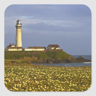 Lighthouse at Pigeon Point State Beach in San Sticker