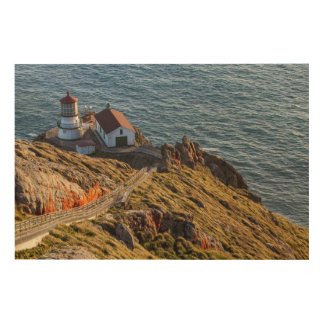 Lighthouse At Point Reyes National Seashore Wood Wall Art