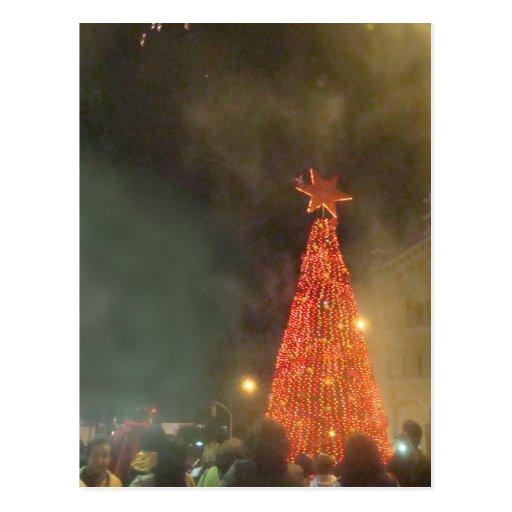 Lighting of the Tree - Red Postcard