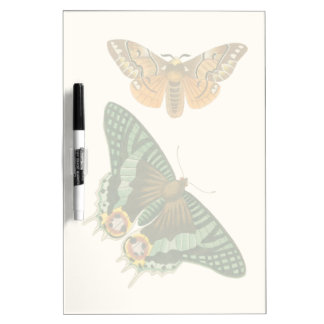 Lightly Bordered Butterfly Painting Dry Erase Board