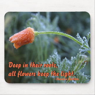Lightly Frosted California Poppy Mouse Pad