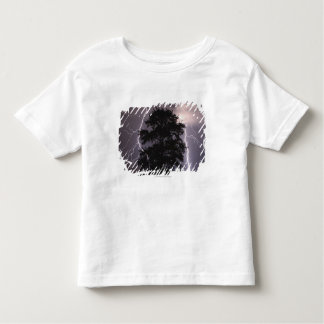 Lightning Strikes In The Sky Behind A Tree Toddler T-Shirt