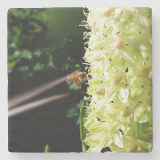 Like A Bee to Honey Stone Coaster