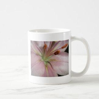 Like a lily.. coffee mug