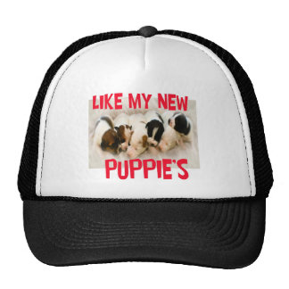 like my new puppies cap