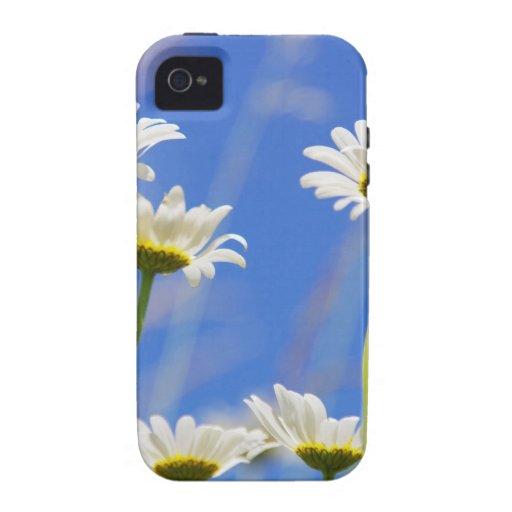 Liking rites sky Leucanthemum vulgare Case For The iPhone 4