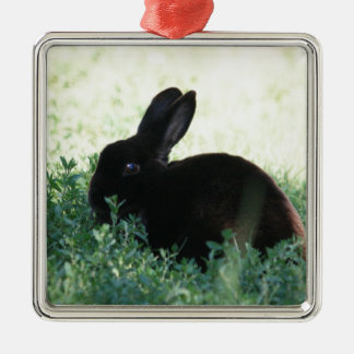 Lil Black Bunny Christmas Ornament