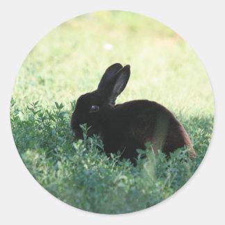 Lil Black Bunny Classic Round Sticker