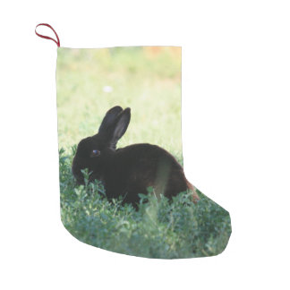 Lil Black Bunny Double Sided Small Christmas Stocking