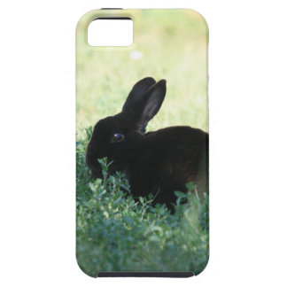 Lil Black Bunny iPhone 5 Vibe Case