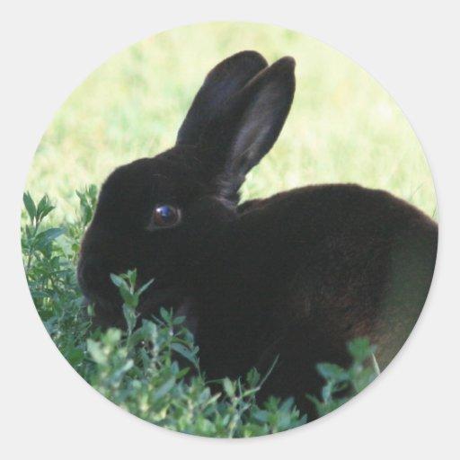 Lil Black Bunny Round Sticker