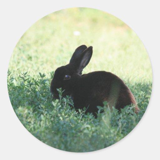 Lil Black Bunny Round Stickers