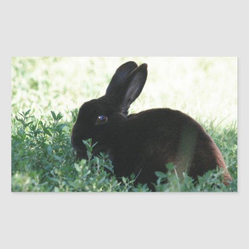 Lil Black Bunny Rectangle Stickers