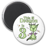 Lil Dragon 3rd Birthday Refrigerator Magnets