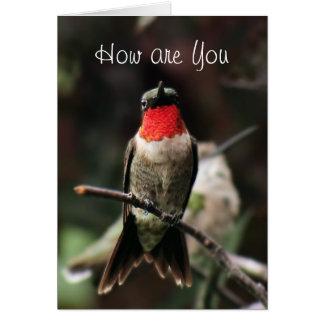 Lil Hummingbird Male greeting or notecard-customiz Note Card