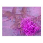 lila Sommertraum Postkarte