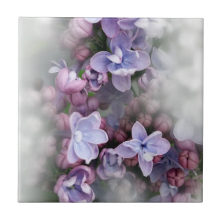 Lilac blooming small square tile