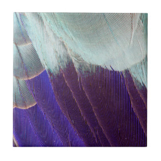 Lilac Breasted Roller Feather Abstract Small Square Tile