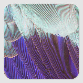 Lilac Breasted Roller Feather Abstract Square Sticker