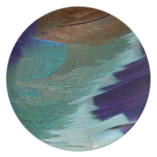 Lilac Breasted Roller feathers Dinner Plate