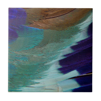 Lilac Breasted Roller feathers Small Square Tile