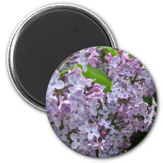 Lilac Bunches 6 Cm Round Magnet