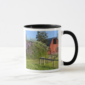 Lilac bushes in bloom and magpies in the trees mug