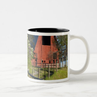 Lilac bushes in bloom and magpies in the trees Two-Tone coffee mug
