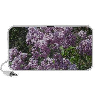 Lilac Doodle Speaker