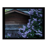 Lilac Flowers & Old Wood Mini Print Postcard