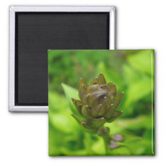 Lilac Hosta Bloom Fridge Magnet