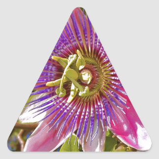 lilac passion flower triangle sticker