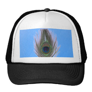 Lilac Peacock Feather on Blue Cap