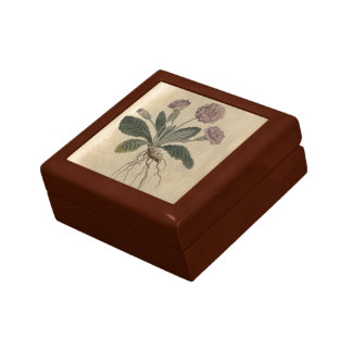 Lilac Primrose Small Square Gift Box