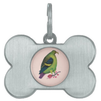 lilac tailed parrotlet, tony fernandes pet tag