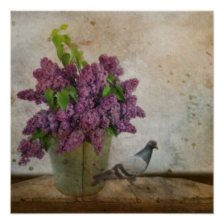 Lilacs in an old Rusty Bucket Poster